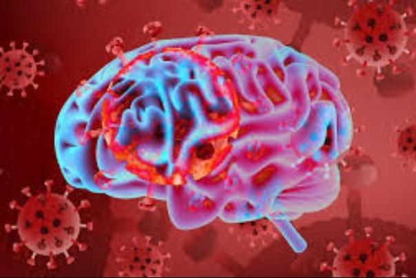 7 نشانه وقتی کرونا به مغز می زند