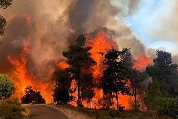 آتشسوزی%20گسترده%20در%20نزدیکی%20قدس%20اشغالی