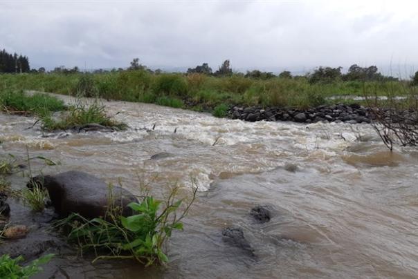 זיהום בנחלים מרכזיים בצפון